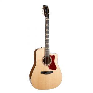 גיטרה אקוסטית מוגברת + תיק Norman ST40 CW HG ELEMENT